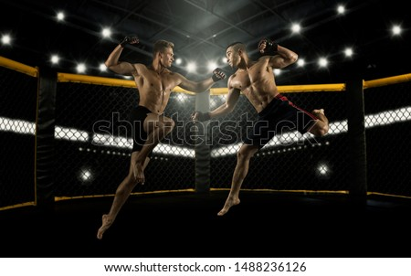 MMA boxers fighters fight in fights without rules in the ring octagons Royalty-Free Stock Photo #1488236126