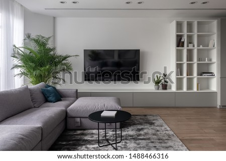 Interior in a modern style with white walls and a parquet with a carpet on the floor. There is a gray sofa with pillows, round black table, green plants in pots, TV, stand, shelves with books, locker. #1488466316