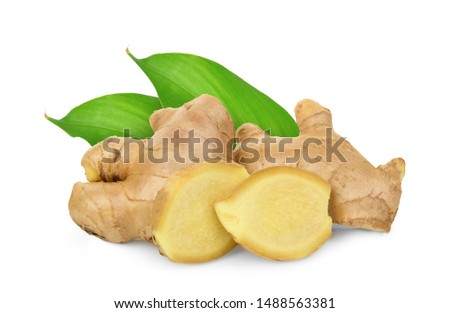 fresh ginger with leaves isolated on white background #1488563381