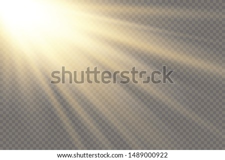 Vector transparent sunlight special lens flash light effect.front sun lens flash. Vector blur in the light of radiance. Element of decor. Horizontal stellar rays and searchlight. #1489000922