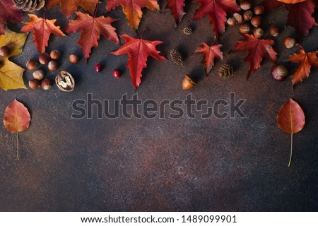 Autumn background with nuts, acorns and red autumn leaves  on dark stone table, harvest still life composition, thanksgiving background, space for text #1489099901