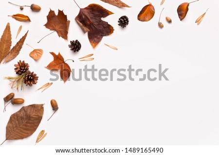 Autumn flat lay of brown fallen leaves on white background with space for creative text #1489165490