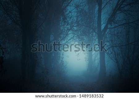 Mysterious pathway. Footpath in the dark, foggy, autumnal, mysterious forest. #1489183532