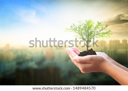 World Habitat Day concept: Human hand holding  tree over city  background #1489484570