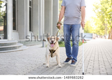Blind mature man with guide dog outdoors #1489883282