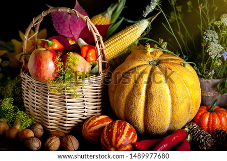 The table, decorated with vegetables and fruits. Harvest Festival. Happy Thanksgiving. Autumn background. Selective focus. #1489977680