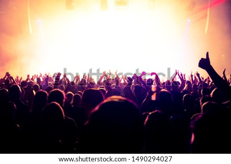 crowd of people at rock concert #1490294027