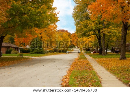 Quiet neighborhood street lined with brightly colored autumn leaves with a sidewalk. #1490456738