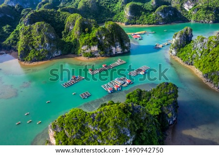 Aerial view Vung Vieng floating fishing village and rock island, Halong Bay, Vietnam, Southeast Asia. UNESCO World Heritage Site. Junk boat cruise to Ha Long Bay. Famous destination of Vietnam Royalty-Free Stock Photo #1490942750