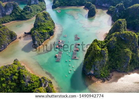 Aerial view of tourists on the boat in Vung Vieng floating fishing village and rock island, Halong Bay, Vietnam, Southeast Asia. UNESCO World Heritage Site. Junk boat cruise to Ha Long Bay. Royalty-Free Stock Photo #1490942774