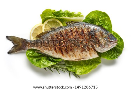 grilled fish on green salad leaves isolated on white background, top view #1491286715