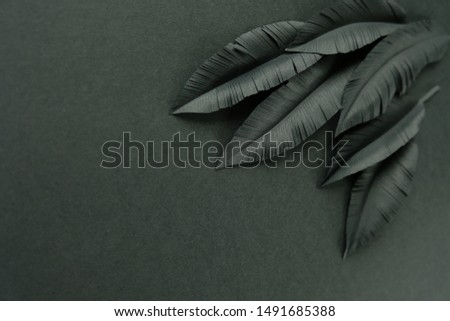 The feathers of a bird made of black paper on black background. Black on black #1491685388