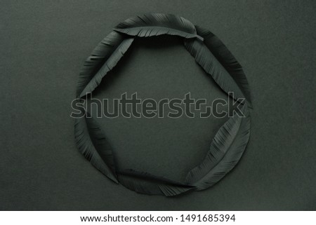 The feathers of a bird made of black paper on black background. Black on black #1491685394