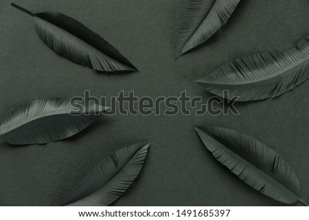 The feathers of a bird made of black paper on black background. Black on black #1491685397