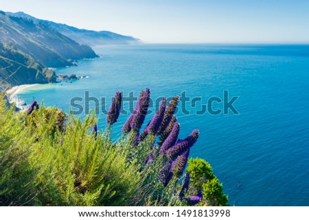 Pacific Coast Highway (Highway 1) at Big Sur in spring time, California Royalty-Free Stock Photo #1491813998