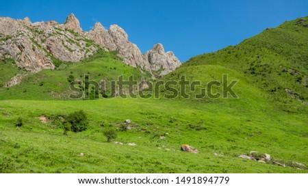 Ganjia grasslands landscape. Grasslands around Xiahe, Gansu province, China. Ganjia grasslands are more pristine and less visited than Sangke grasslands.  #1491894779