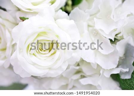 roses White plastic flowers background