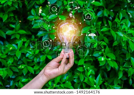 Light bulbs that grow in the concept of energy in nature. #1492164176