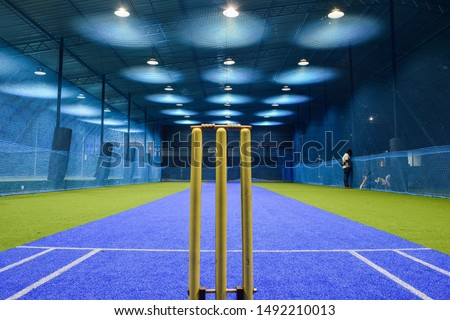 view from behind the wicket of an indoor cricket stadium #1492210013