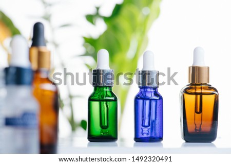 Transparent multi-colored cosmetic glass dropper bottles over green plants on white background. Vials with pipette plastic caps for essential oils, perfumes and skincare substances. Three in a row. #1492320491