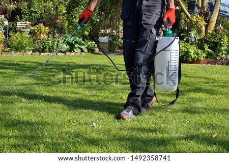 spraying pesticide with portable sprayer to eradicate garden weeds in the lawn. weedicide spray on the weeds in the garden. Pesticide use is hazardous to health. Weed control concept. weed killer.  #1492358741