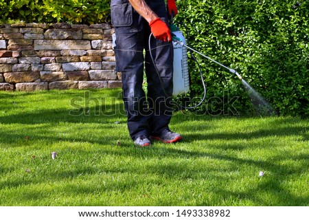 spraying pesticide with portable sprayer to eradicate garden weeds in the lawn. weedicide spray on the weeds in the garden. Pesticide use is hazardous to health. Weed control concept. weed killer.  #1493338982