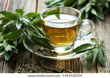 Sage tea  in glass mug and sage leaves on wooden table,  selective focus with shallow depth of field #1493420504