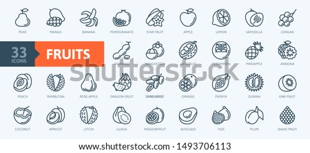 Fruits, exotic fruits, vegetarian - minimal thin line web icon set.  Included the simple vector icons as mango, durian, rambutan, guava, tamarind, jackfruit.  Outline icons collection. Royalty-Free Stock Photo #1493706113