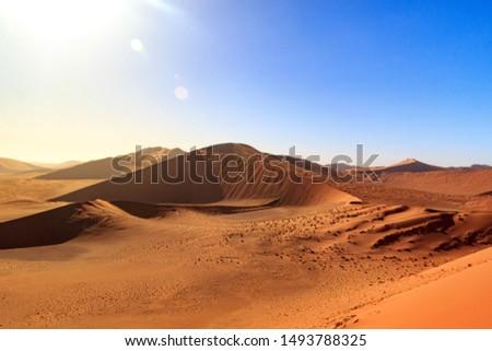 View from Dune 45, morning light, Namib desert, Namibia #1493788325