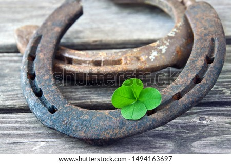 Lucky symbol horseshoe and lucky clover #1494163697