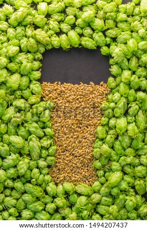 Beer concept. Natural ingredients of brewery process- hops cones pattern and barley grains in form of shape of beer glass. October fest idea board. #1494207437