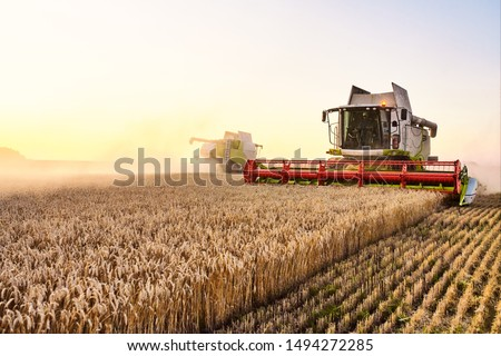 Combine harvester harvests ripe wheat. agriculture #1494272285