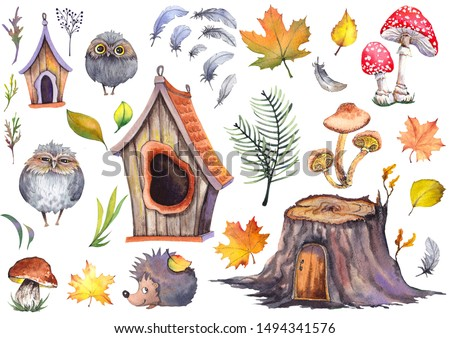 Forest set with cute owls, hedgehog, birdhouses, tree stump, mushrooms and colorful autumn leaves. Watercolor isolated on white background.