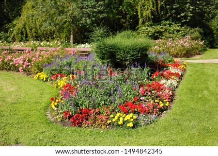 Blooming colorful summer flowers, flowerbed on a lawn #1494842345