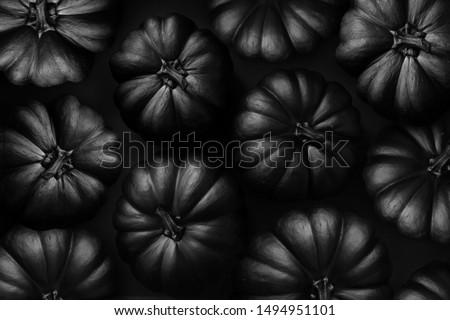 halloween black pumpkin on the black background #1494951101