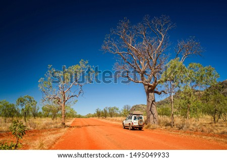 Outback track with 4WD vehicle and boab tree at the dry season with blue sky at the Kimberleys - Western Australia #1495049933