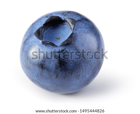 Blueberry isolated. Blueberry on white background. Bilberry. Clipping path. #1495444826