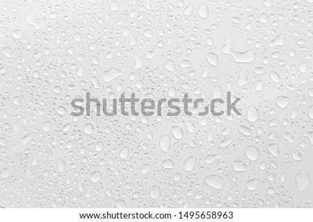 Water Drops On white Background, Texture colorful waterdrop/ #1495658963