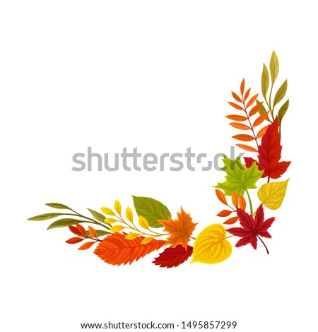 Lower right right corner of the autumn leaves. Vector illustration on a white background. #1495857299