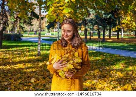 Golden autumn concept. Beautiful girl in a yellow sweater throws leaves up, outdoor portrait #1496016734