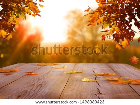 Autumn maple leaves on wooden  table.Falling leaves natural background. Royalty-Free Stock Photo #1496060423
