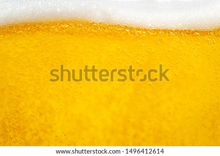 Pouring beer with bubble froth in glass for background and design. #1496412614