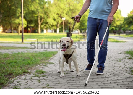 Blind mature man with guide dog in park #1496628482