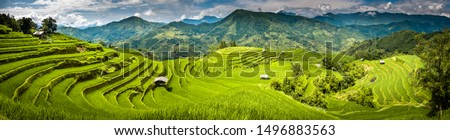 Landscape panorama of Vietnam, terraced rice fields of Hoang Su Phi district, Ha Giang province. Spectacular rice fields. Stitched panorama shot. Royalty-Free Stock Photo #1496883563