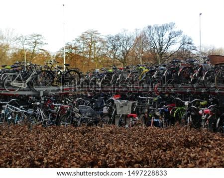 Bike racks, Den Haag, Netherlands #1497228833