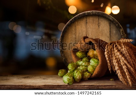 Beer brewing ingredients Hop in bag and wheat ears on wooden cracked old table. Beer brewery concept. Hop cones and wheat closeup. Sack of hops and sheaf of wheat on vintage background. #1497242165