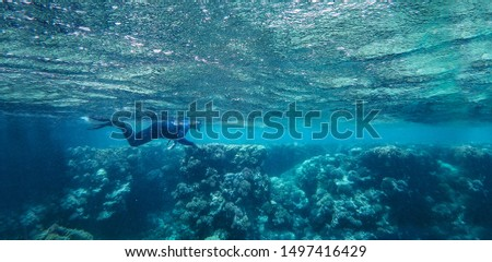 Underwater background of ocean and free space for your decoration.  #1497416429