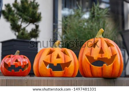 Halloween pumpkins. Scary faces. Halloween holiday. Pumpkins in the garden. #1497481331