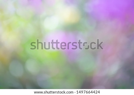 Defocused abstract background in violet-yellow tones. The atmosphere of spring and celebration. #1497664424