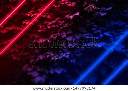 Glowing neon lights on a background of leaves, Modern futuristic night scene with red and blue glow #1497998174